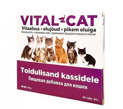 VITAL-CAT VITAMIINID KASSIDELE TAB N40
